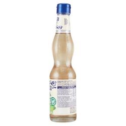 Mint Bio Syrup 360ml